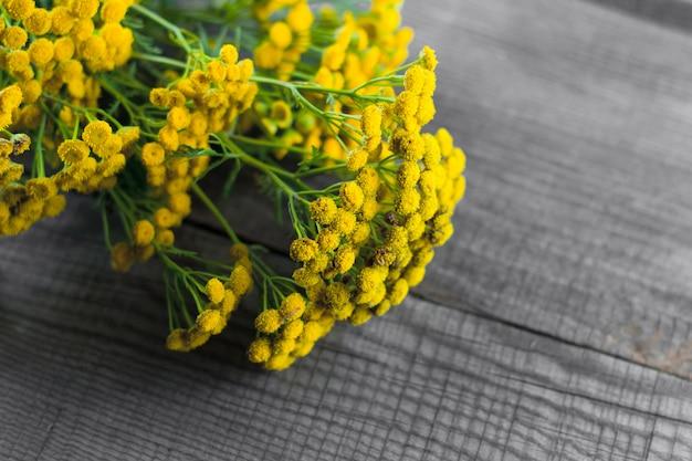 Fiore giallo tanaceto su un fondo di legno