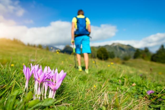 Fiore in primo piano con l'uomo che pratica il nordic walking sfocato