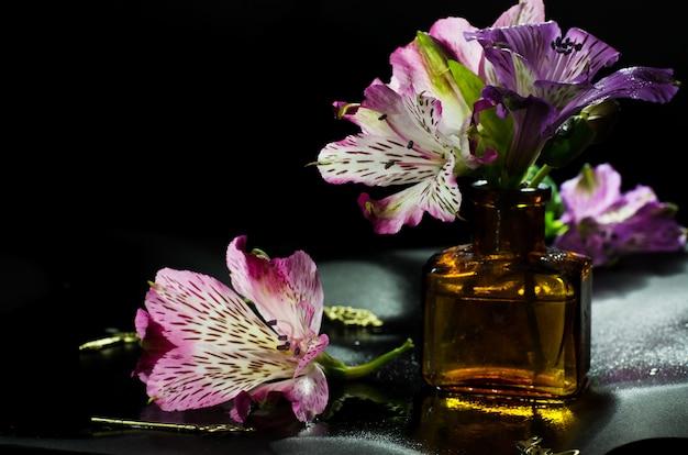 Fiore luminoso di alstroemeria su un fondo nero.