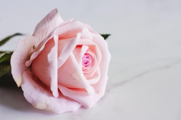 Fiore rosa artificiale rosa su fondo di marmo bianco
