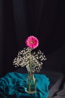 Fiore rosa con i ramoscelli della fioritura in vaso vicino alla tessile blu nell'oscurità
