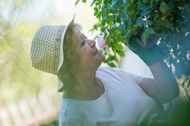 Fiore sentente l'odore della donna senior in giardino