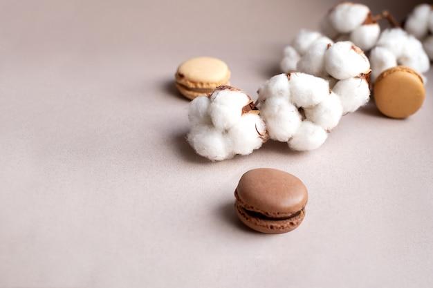 Fiori bianchi del cotone e maccheroni francesi su beige