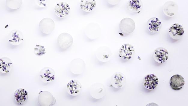 Fiori congelati in cubetti di ghiaccio su sfondo bianco