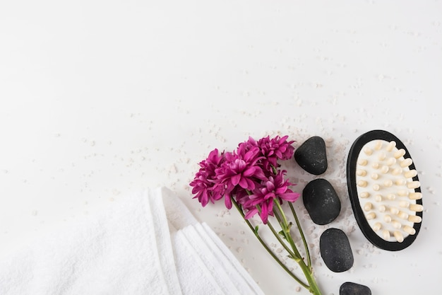 Fiori di aster; asciugamano; pietra della stazione termale e spazzola di massaggio su sale sopra priorità bassa bianca