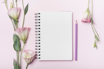 Fiori di eustoma; quaderno a spirale vuota con matita viola su sfondo rosa