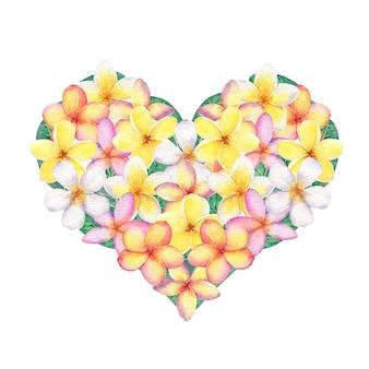 Fiori di frangipane a forma di cuore