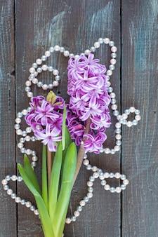 Fiori di giacinto viola