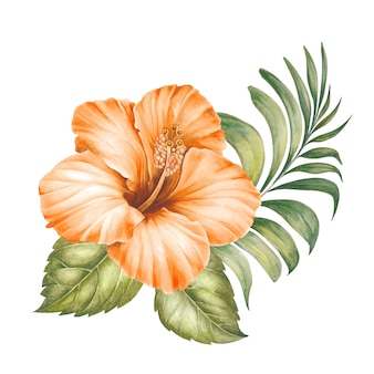 Fiori di ibisco e foglie di palma.
