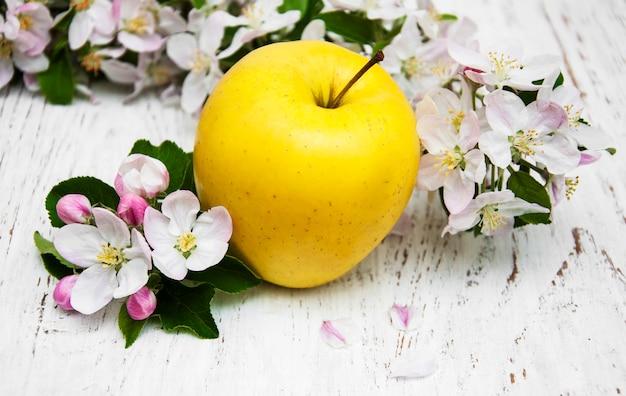 Fiori di melo e mela