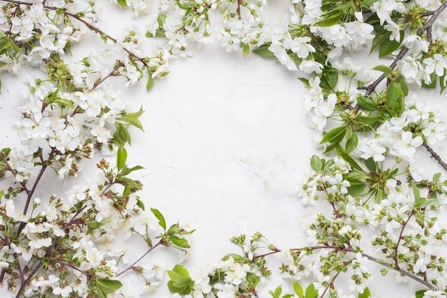 Fiori di primavera ciliegie e cerchio pulito sulla superficie della pietra chiara. vista piana, vista dall'alto