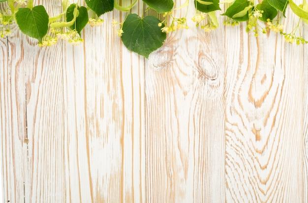 Fiori di tiglio su sfondo di legno.