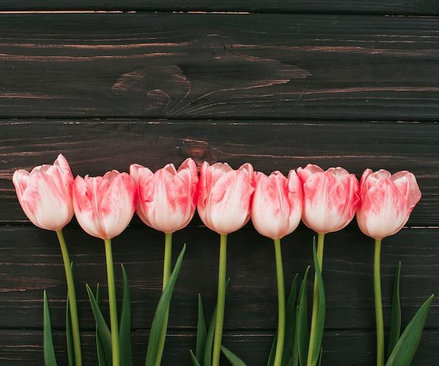 Fiori di tulipano rosa sparsi sul tavolo