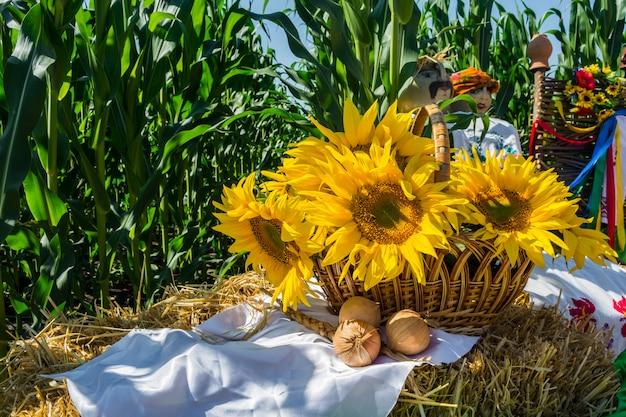 Fiori di un girasole in un cesto, su una balla di paglia, su uno sfondo di un campo di grano