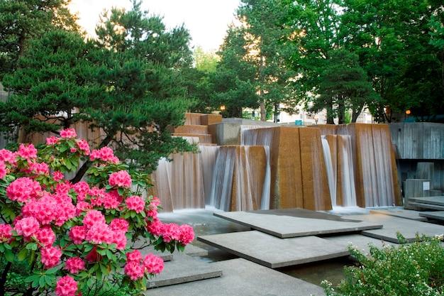 Fiori in giardino con cascata sullo sfondo