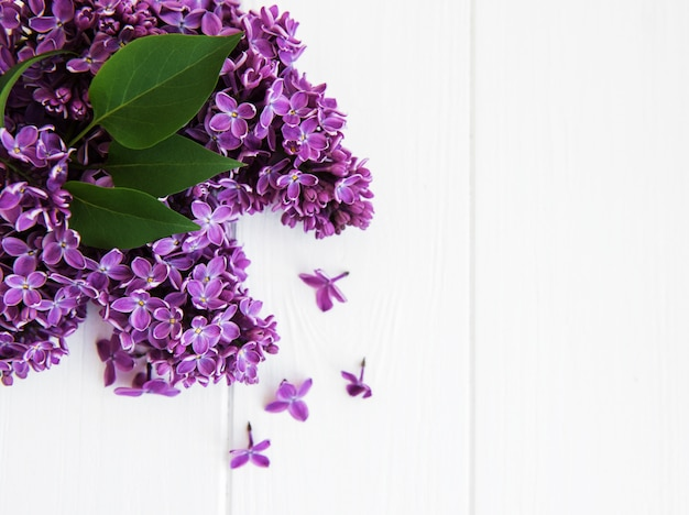 Fiori lilla su un tavolo