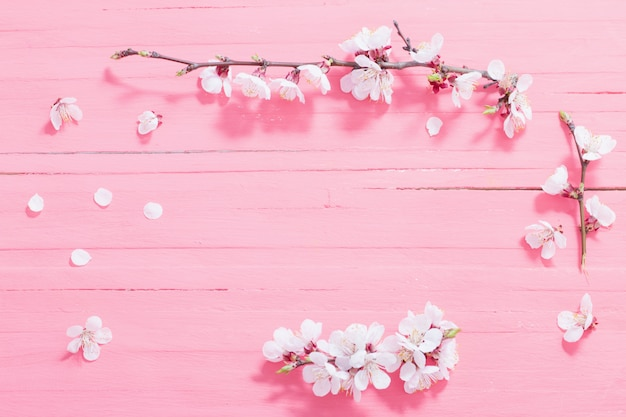 Fiori rosa della ciliegia su fondo di legno