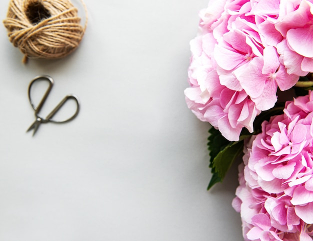 Fiori rosa di ortensia