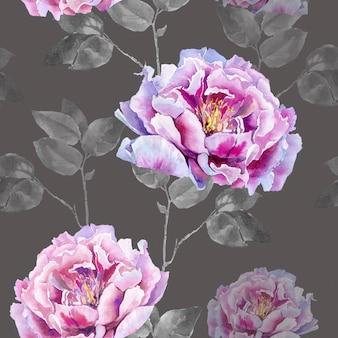 Fiori rosa di peonia