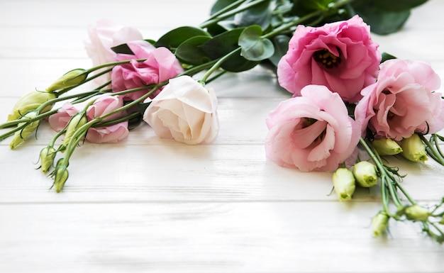 Fiori rosa freschi di eustoma