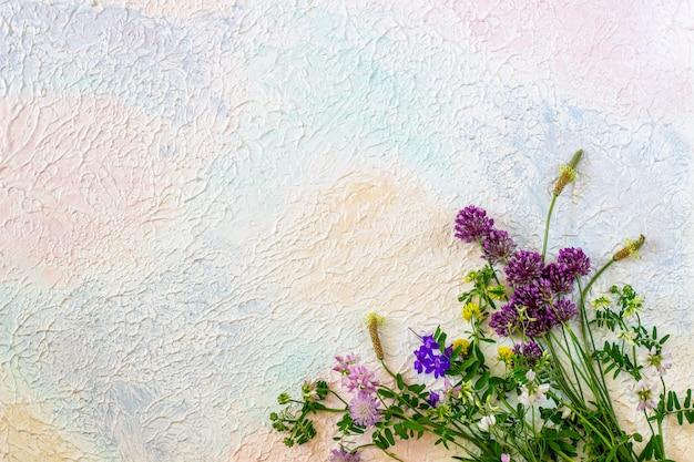 Fiori su un blu rosa bianco. concetto minimale creativo.