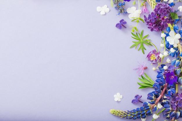 Fiori viola, blu, rosa su carta