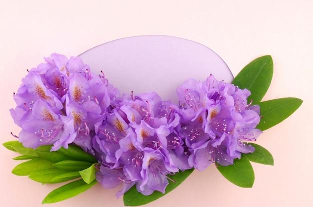 Fiori viola con foglie