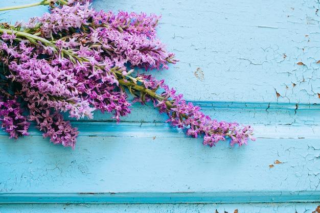 Fiori viola della maculata di dactylorhiza su un fondo blu di legno