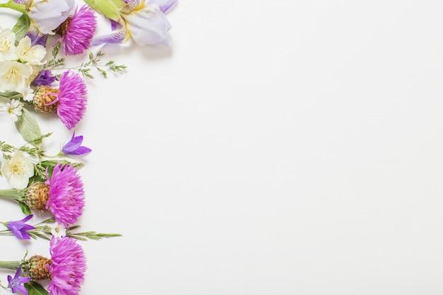 Fiori viola di estate su superficie bianca