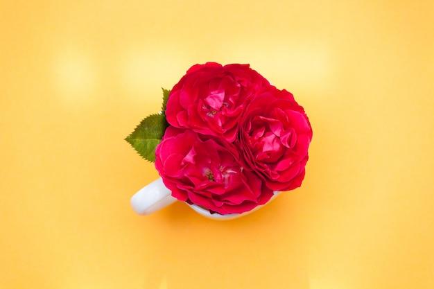 Fiorisce le rose rosse in una tazza su fondo arancio. vista piana, vista dall'alto, sfondo floreale.