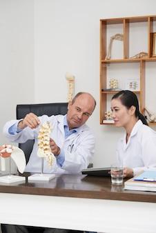 Fisioterapista che spiega la struttura della colonna vertebrale allo stagista usando il modello 3d