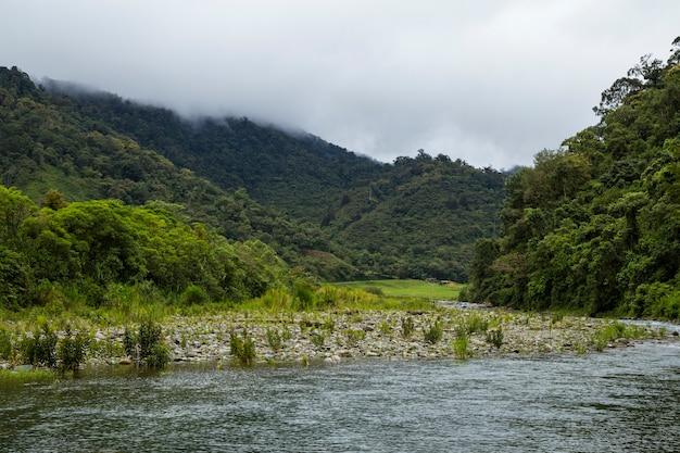 Fiume che scorre lentamente nella foresta pluviale tropicale in costa rica