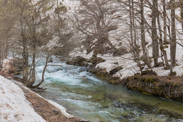 Fiume delle arazas nel parco nazionale di ordesa y monte perdido con neve.