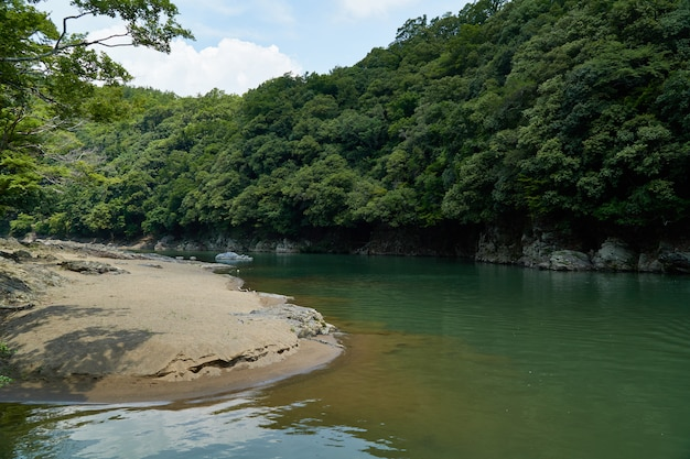 Fiume e riva di katsura con la foresta