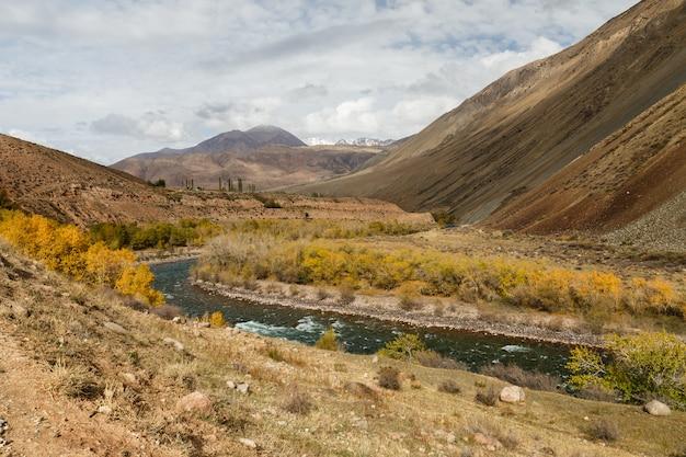 Fiume kokemeren, kyzyl-oi, kirghizistan, paesaggio autunnale del fiume di montagna