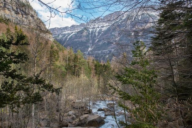 Fiume nel burrone cotatuero a ordesa ordesa e parco nazionale del monte perido