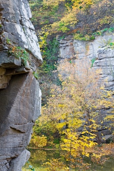 Fiume nel canyon