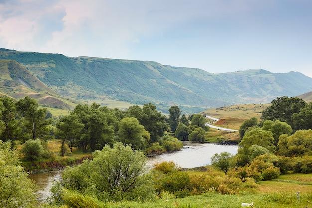 Fiume nella valle, paesaggi naturali nelle montagne della georgia