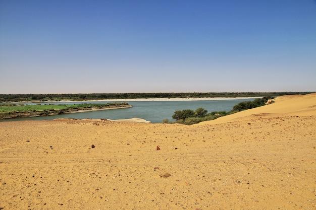 Fiume nilo, il vecchio dongola in sudan, deserto del sahara, africa