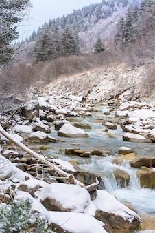 Fiumi nelle montagne del caucaso, paesaggio invernale dei fiumi di montagna