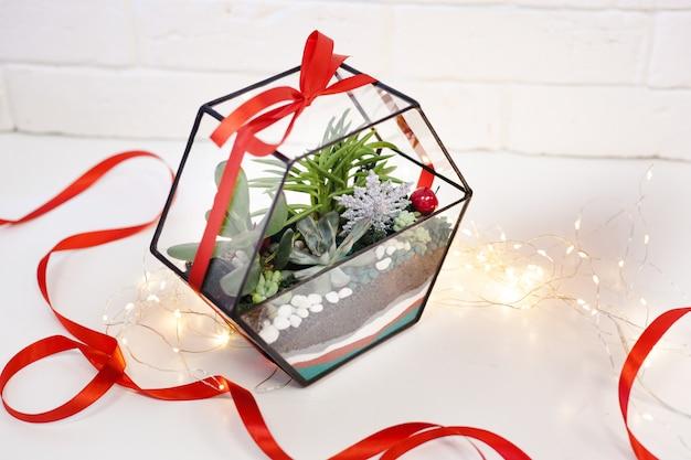 Florarium, composizione di piante grasse, pietra, sabbia e vetro, elemento di interni, decorazioni per la casa, decorazioni natalizie, regalo di capodanno