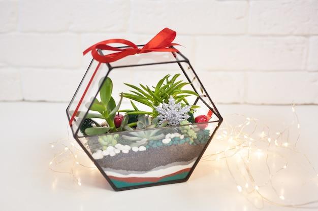 Florarium - composizione di piante grasse, pietra, sabbia e vetro, elemento di interni, decorazioni per la casa, decorazioni natalizie, regalo di capodanno