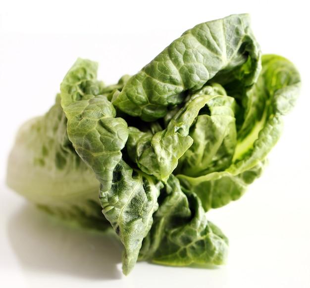 Fogli dell'insalata isolati su bianco