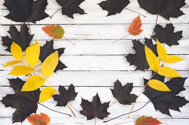 Fogli di autunno su una scheda di legno, priorità bassa bianca.