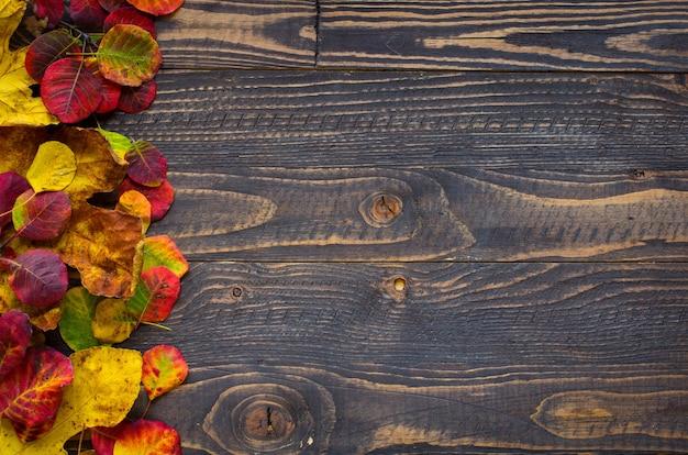 Fogli di autunno variopinti, sopra una priorità bassa della struttura di legno