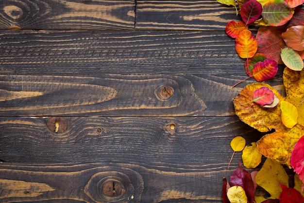 Fogli di autunno variopinti, sopra una priorità bassa di legno