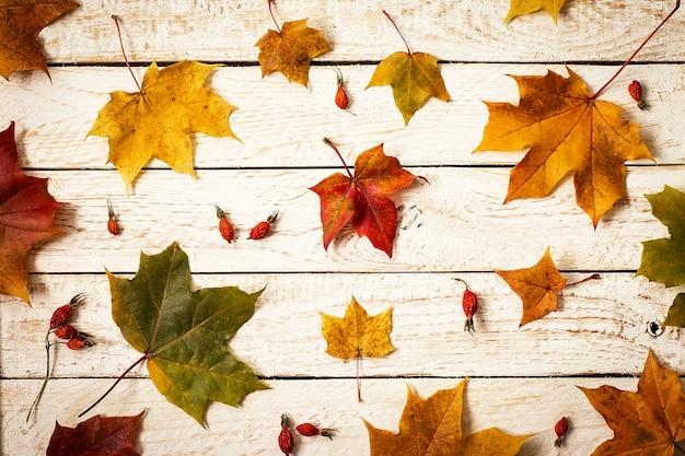 Fogli di autunno variopinti su superficie di legno. vista dall'alto