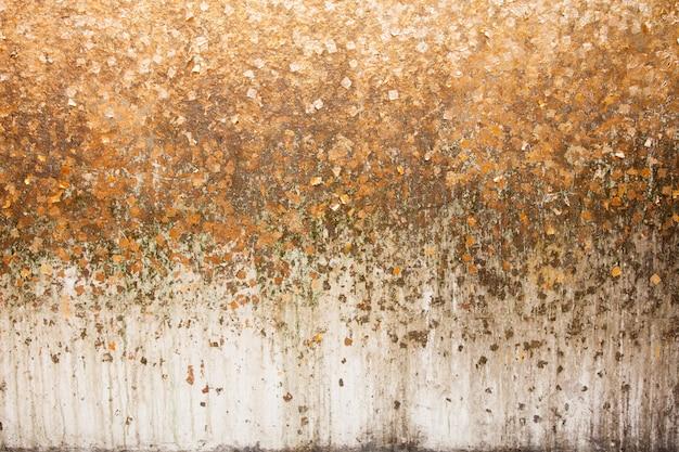 Foglia d'oro su sfondo muro.