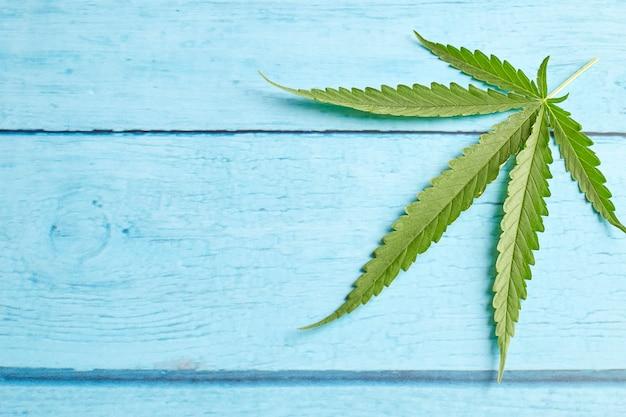 Foglia di cannabis su legno blu brillante