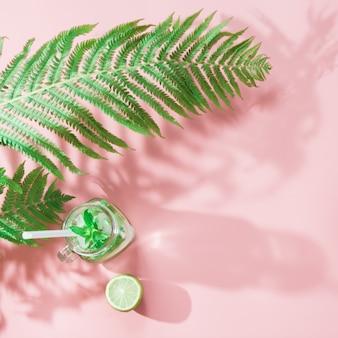Foglia di felce con ombra e acqua detox sul rosa pastello. vista dall'alto con lo spazio della copia.
